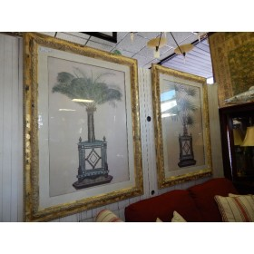 Gold Frame - Large Palm Picture